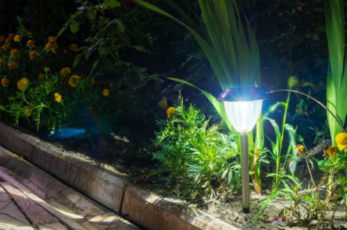 close up of a solar path light in the ground
