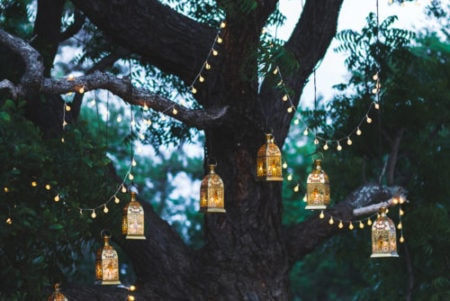 outdoor solar lanterns hanging on a tree
