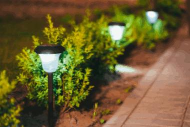 solar powered garden lights in a row