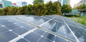 solar panels near trees and buildings